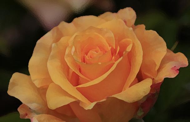 Rosa de Jose_pincel